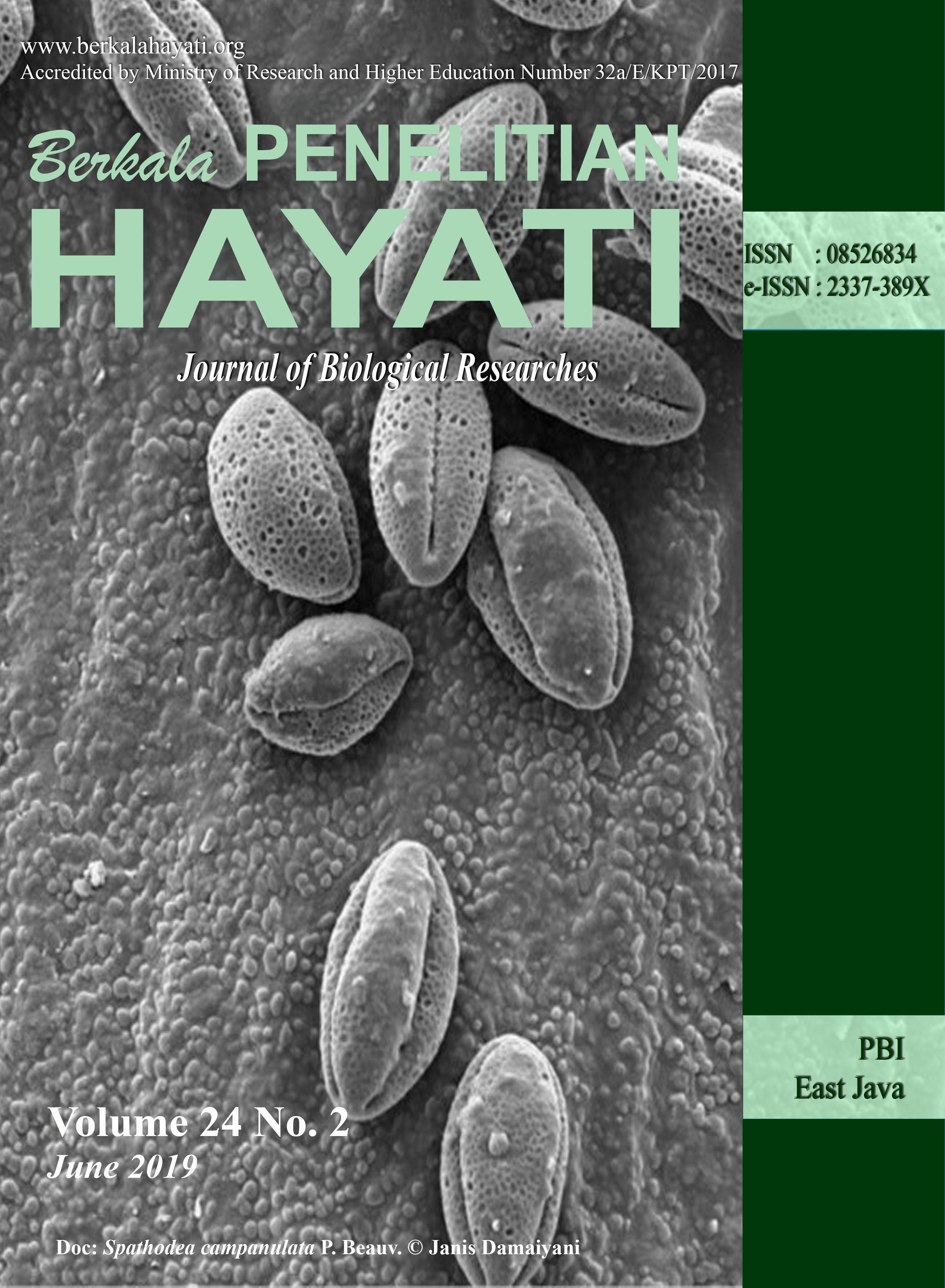cover vol 24 no 2